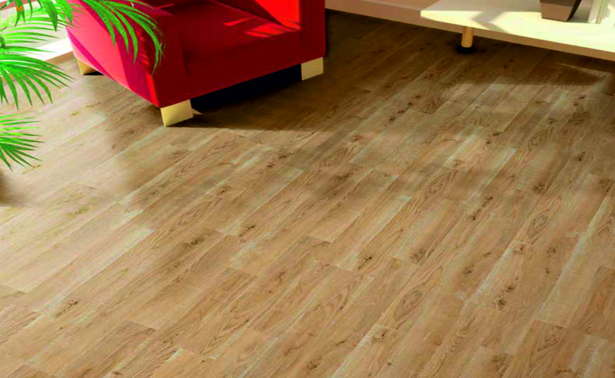 parchet laminat 8mm pret elm tree